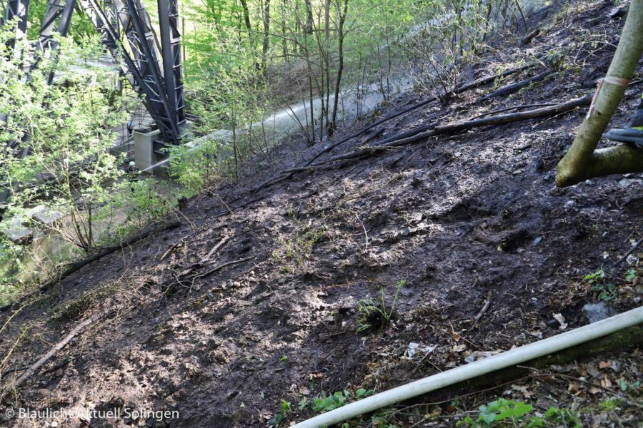 Waldbrand Brückenpark 01